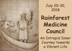 Rainforest Medicine Council July 2018