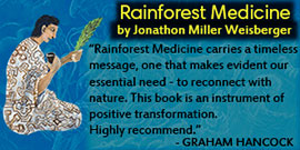 Rainforest Medicine Book