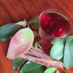 Cinnamon tea ~ freshly harvested